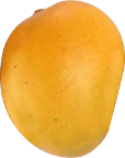 A1 Mango Grade