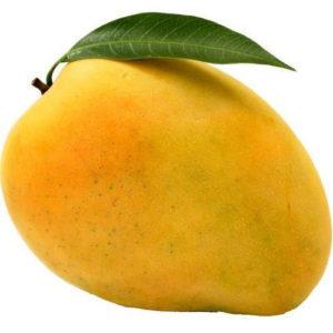 fresh-kesar-mango
